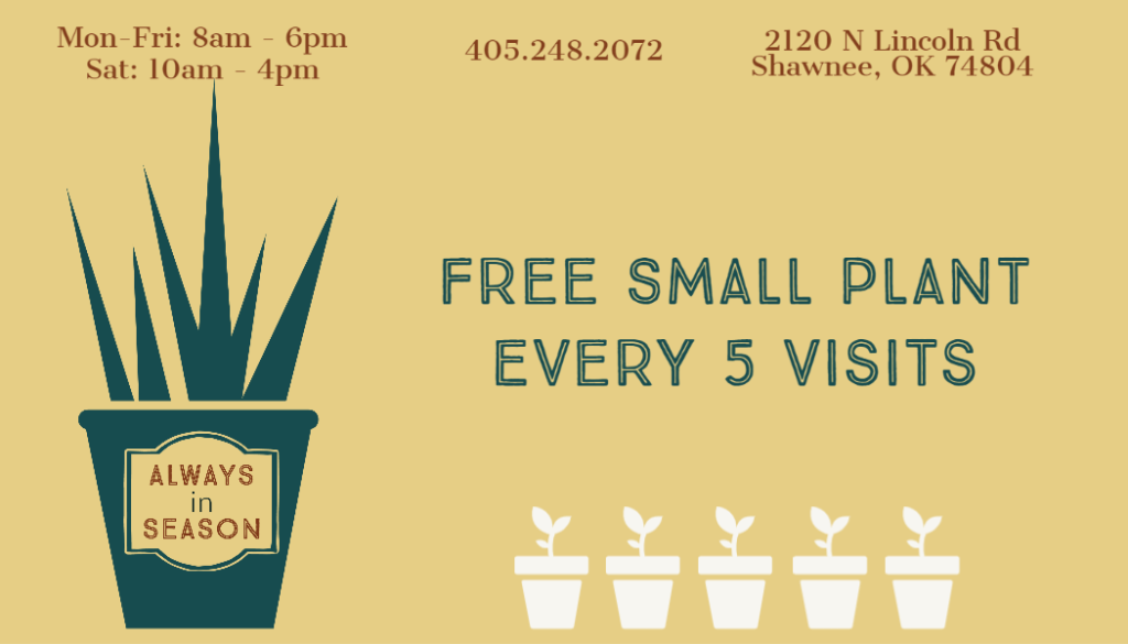 Custom loyalty card / punch card. Plant logo, business information, and small plants to punch.